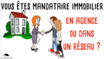 video dessinee immobilier